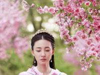 电视剧《凤凰无双》预告上线  王丽坤或成唐嫣第二?