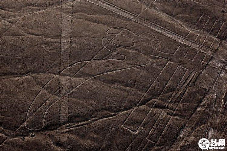 世界十大谜团之一惊人发现 纳斯卡线条是由谁建造