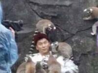 《奔跑吧》昨日开录 李晨被猴淹没陈伟霆迪丽热巴CP合体