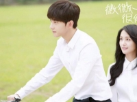 郑爽杨洋将出演新剧《爱你是我做过最好的事》 倾城夫妇再合体